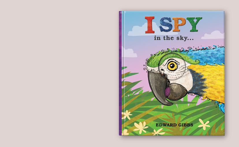 I Spy Sky 1.jpg