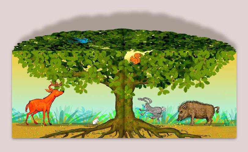 acorn tree 3.jpg