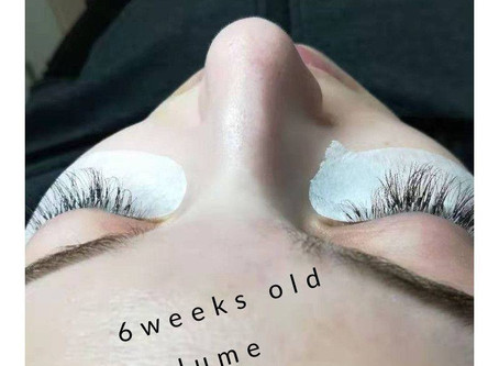 6 weeks old 3D volume lash extensions