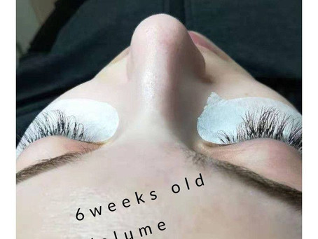 6 weeks old 3D volume lash extensions