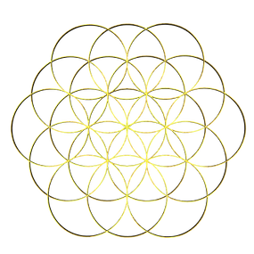2_floweroflife_RIGHT1.png