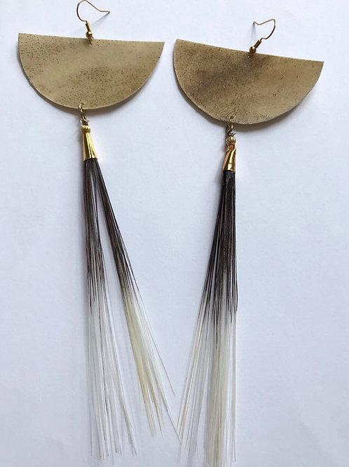 Porcupine & Elk