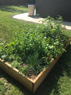 Garden Box 1