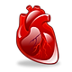 cardiology_256.png