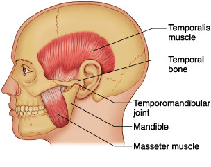 TMJ - Three Things You Need to Know