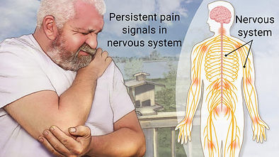 chronic pain, chiropractor, neck pain, lower back pain