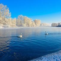 winter see.jpg