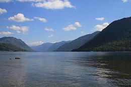 lake-teletskoye-1869460_1920.jpg