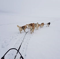 Baikal Winter 5