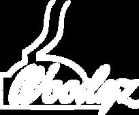 Woodyz-logo-white.png