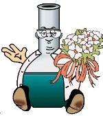 Chemiekids-Wettbewerb - Heinitzer sehr gut dabei
