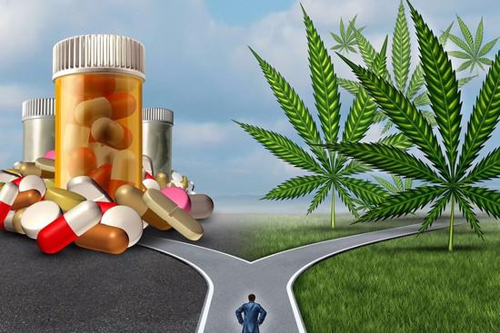 5 תרופות מרשם שניתן להחליף עם קנאביס