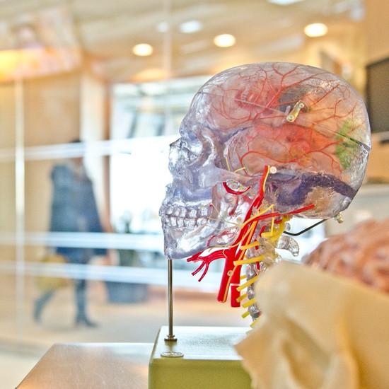 נוירופטיה של סיבי העצב הדקים