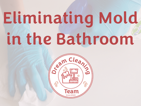 Eliminating Mold from the Bathroom