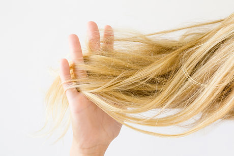 Woman's hand holding dry, blonde, tangled hair on the light gray background. Hair problem