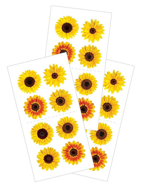 MINI Sunflowers.jpg