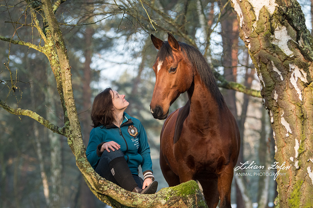 2018_Zafiri_Warmblüter_Gina_Feelings_25_web
