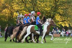 2017_Zafiri_Ponyfest_Isländer_web