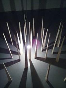 installation by Salomé