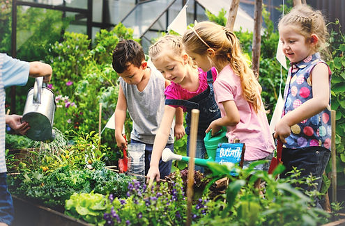 group-of-kindergarten-kids-learning-gard