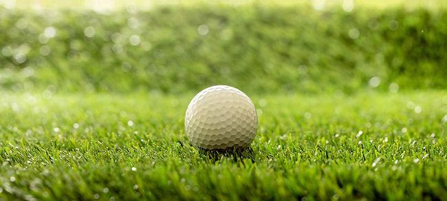 golfball-on-green-grass-golf-course-close-up-view-DBAR8VX.JPG