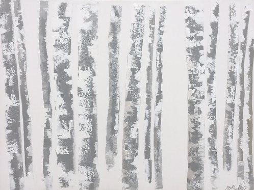 Aspen Trees 36x48