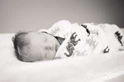 Baby Brockton for web-3-2