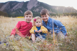Gray Family for FB-2