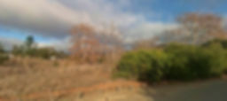 El Chorro Regional Park Campground, San Luis Obispo