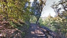 Coast Ridge Road Trail, Big Sur