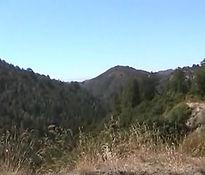 Turner Creek Trail, Big Sur