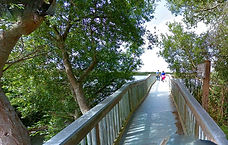 Oso Flaco Boardwalk Trail, Oceano