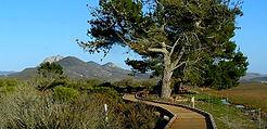 Morro Bay Hiking Trails