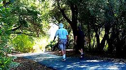 Avila Beach Hiking Trails