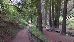 Canyon Trail, Big Sur