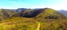 Oats Peak Trail, Los Osos