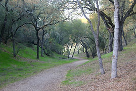 Blue Oak Trail, Atascadero