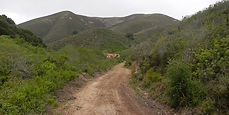 Islay Creek Canyon Trail, Los Osos