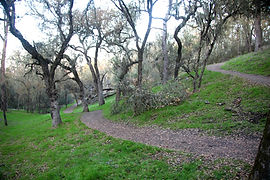 Jim Green Trail, Atascadero