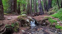 Ewoldsen Trail, Big Sur