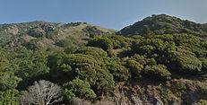 Salmon Creek Trail, Big Sur