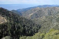 Cone Peak Trail, Big Sur