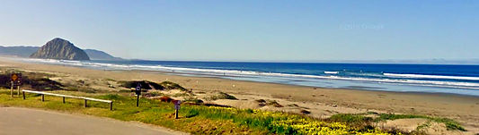 Morro Strand State Beach Campground, Morro Bay