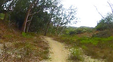 Bloody Nose Trail, Los Osos