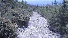 Morning Glory Trail, San Luis Obispo