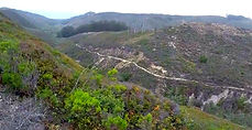 Hazard Canyon Trail, Los Osos