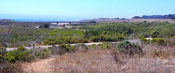 San Simeon hiking trails