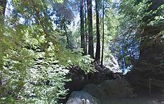 Pfeiffer Falls Trail, Big Sur