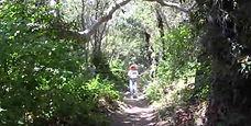 Reservoir Canyon Trail, San Luis Obispo