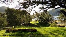 Cougar Trail, Arroyo Grande